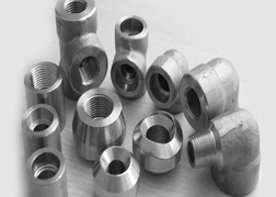 Duplex Steel S31803/S32205 Forged Threaded Fittings
