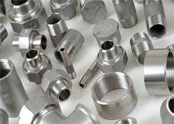 Stainless Steel 304L Forged Threaded Fittings